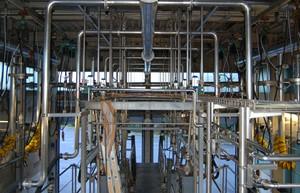 Rohrleitungen zu Spülköpfen der Reinigungsbahnen
